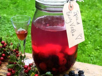 Easy sloe gin/winter berry vodka recipe