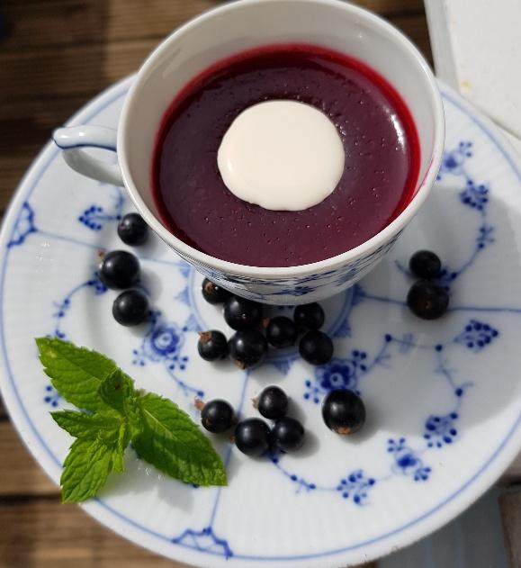 Danish Rødgrød Med Fløde - red berry pudding with cream