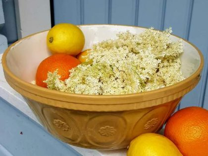 Easy elderflower cordial