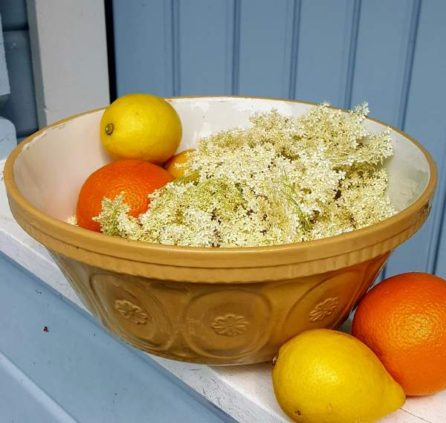 hyggestyle elderflower cordial recipe