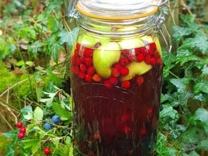 Our favourite hedgerow schnapps recipe!